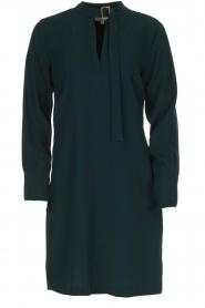 Dante 6 | Jurk met gespdetail Kacey | groen  | Afbeelding 1