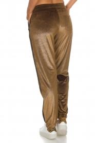 Blaumax |  Velvet pants Mori | brown  | Picture 5