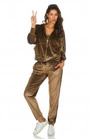 Blaumax |  Velvet pants Mori | brown  | Picture 3