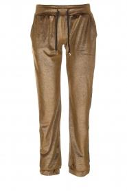 Blaumax |  Velvet pants Mori | brown  | Picture 1