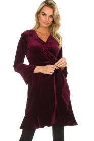 Hale Bob |  Velvet wrap dress Lexa | bordeaux  | Picture 2
