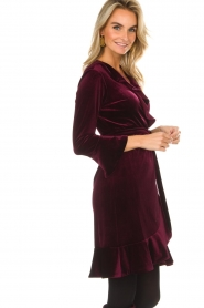 Hale Bob |  Velvet wrap dress Lexa | bordeaux  | Picture 5