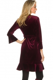 Hale Bob |  Velvet wrap dress Lexa | bordeaux  | Picture 6
