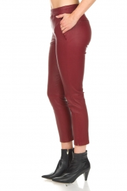 Arma |  Leather leggings Provence | burgundy  | Picture 4