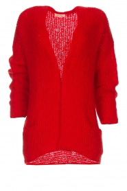 American Vintage |  Cardigan Boolder | red  | Picture 1