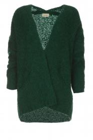 American Vintage | Vest Boolder | groen  | Afbeelding 1