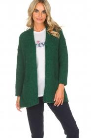American Vintage | Vest Boolder | groen  | Afbeelding 2