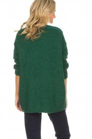 American Vintage | Vest Boolder | groen  | Afbeelding 5