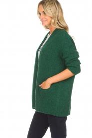 American Vintage | Vest Boolder | groen  | Afbeelding 4