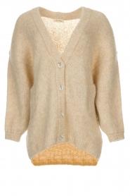 American Vintage | Vest Zapitown | beige  | Afbeelding 1