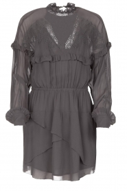 IRO |  Dress with embroidered details Paradiz | grey  | Picture 1