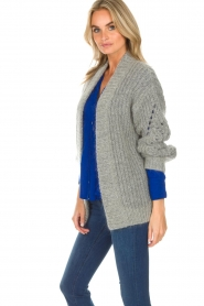 IRO |  Cardigan Beatnik | grey  | Picture 4