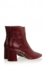 Noe |  Leather ankle boots Nippie | bordeaux  | Picture 4