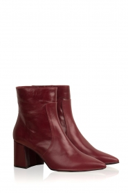 Noe |  Leather ankle boots Nippie | bordeaux  | Picture 3