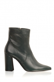 Noe |  Leather ankle boots Nipola | green  | Picture 1