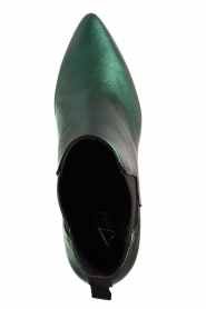 Toral |  Leather ankle boots Eclat | green  | Picture 6