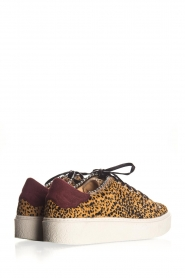 SVNTY | Leather sneakers Praia | print  | Picture 5