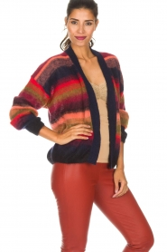 Essentiel Antwerp |  Coloured cardigan Rorea | multi  | Picture 4