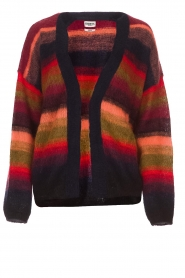 Essentiel Antwerp |  Coloured cardigan Rorea | multi  | Picture 1