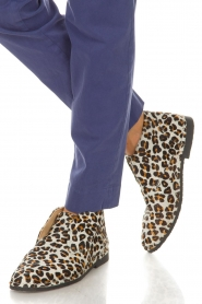 Maluo |  Shoes Dali | animal print  | Picture 2