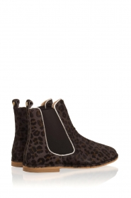 Maluo |  Leather ankle boots Cato | brown  | Picture 6