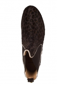 Maluo |  Leather ankle boots Cato | brown  | Picture 7