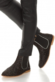 Maluo |  Leather ankle boots Cato | brown  | Picture 3