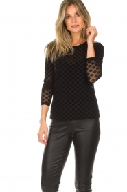 Aaiko |  See-through top with seashell print Syenne | black  | Picture 2