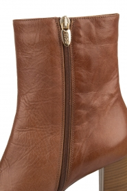 Noe |  Ankle boots Nives | brown   | Picture 7