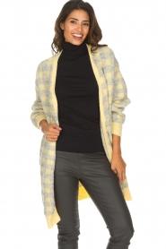 American Vintage | Vest met geblokte print Olivia | geel  | Afbeelding 2