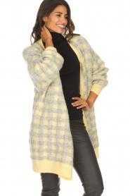 American Vintage | Vest met geblokte print Olivia | geel  | Afbeelding 3