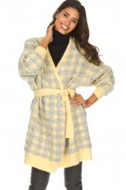 American Vintage | Vest met geblokte print Olivia | geel  | Afbeelding 6