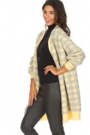 American Vintage | Vest met geblokte print Olivia | geel  | Afbeelding 4