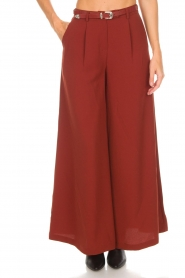 Silvian Heach |  Cropped trousers Tonala | brown  | Picture 3