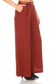 Silvian Heach |  Cropped trousers Tonala | brown  | Picture 4