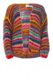 Les tricots d'o | Woolen cardigan Fleur | multi  | Picture 1