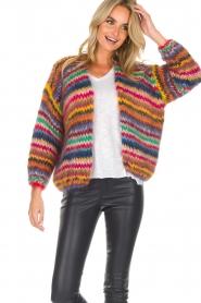 Les tricots d'o | Woolen cardigan Fleur | multi  | Picture 2