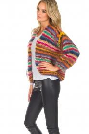 Les tricots d'o | Woolen cardigan Fleur | multi  | Picture 5