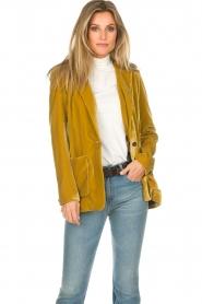Set |  Velvet blazer Vivienne | gold  | Picture 5