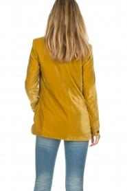 Set |  Velvet blazer Vivienne | gold  | Picture 7