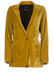Set |  Velvet blazer Vivienne | gold  | Picture 1