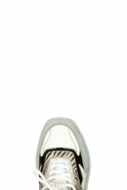 D.A.T.E |  Sneakers with zebra print Fuga   | Picture 6