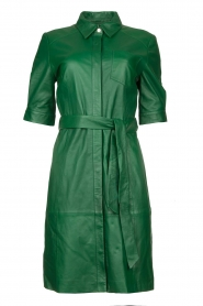 Dante 6 |  Leather dress Chandler | green  | Picture 1