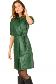 Dante 6 :  Leather dress Chandler | green - img5