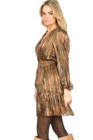 Dante 6 |  Printed dress Olivia | multi  | Picture 3