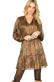 Dante 6 |  Printed dress Olivia | multi  | Picture 5