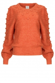 Dante 6 |  Sweater with balloon sleeves Elomi | red  | Picture 1