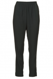 Dante 6 |  Pants with pleats Bowie | green  | Picture 1