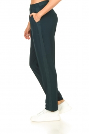 Dante 6 |  Pants with pleats Bowie | green  | Picture 5