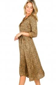 Aaiko |  Printed midi dress with belt Soila | brown  | Picture 5
